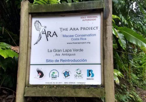 Ara Manzanillo wildlife project