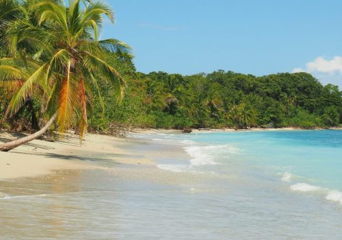 Punta Uva Beach. Caribbean coast, Costa Rica
