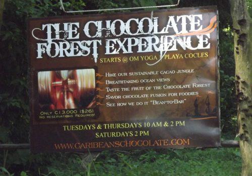 Caribeans chocolate tour