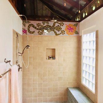 Shower Colibri